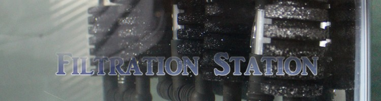 header-filtrationstation