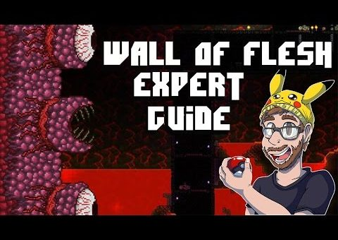 Terraria 1.3 - how to defeat the wall of flesh expert mode 2016 - TUTORIAL FOR NEW PLAYERS